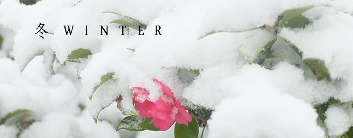 貼り付け 冬winter